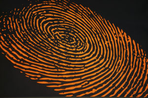 fingerprint 1